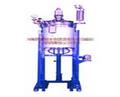 【出售】磁力搅拌高压釜磁力驱动高压反应釜