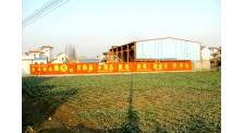 温州墙体广告公司