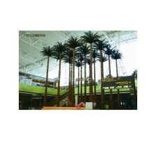 上海标本树设计