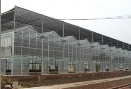 新型智能温室