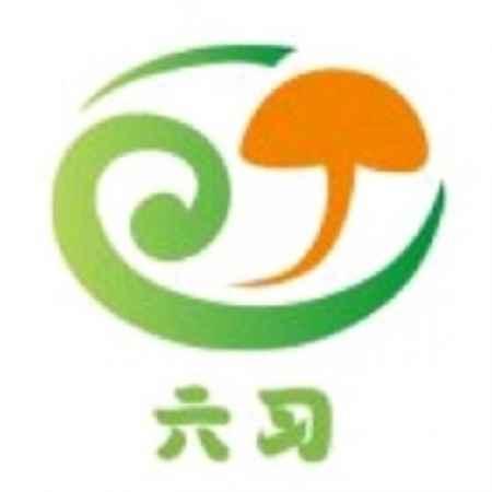 平菇种植技术加盟