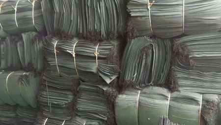 环保型绿化袋报价