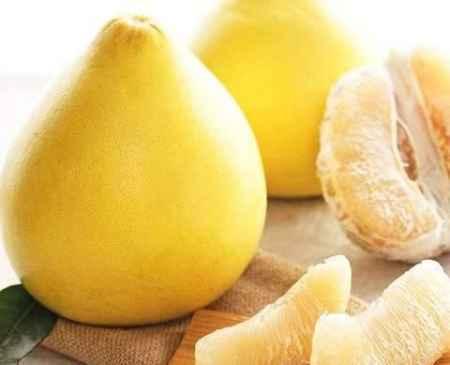 南宁酸柚销售