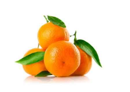 广州礼品水果